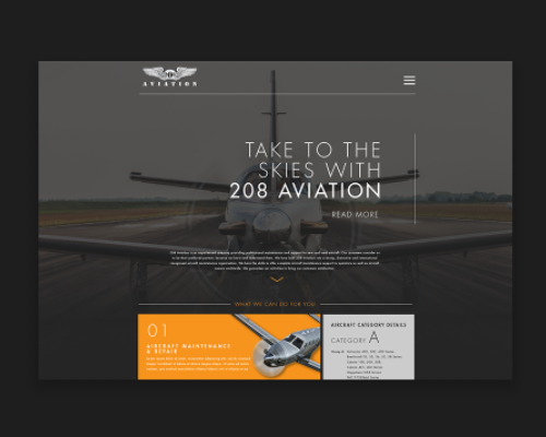 208 Aviation